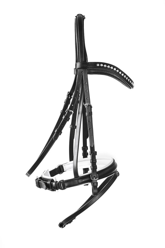 Black and white horse bridle.
